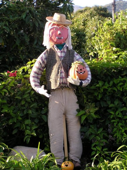 Go Back gt Gallery For Scarecrows
